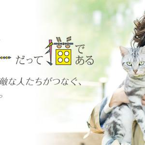 [日劇]咕咕是一隻貓線上看-wowow電視喜劇直播Goo Goo! The Cat Live