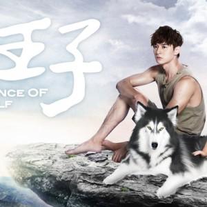 [台劇]狼王子線上看-台視電視劇直播Prince Of Wolf Live