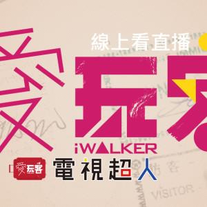 [台綜]愛玩客線上看-三立都會台直播綜藝節目iWalker LIVE