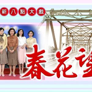 [台劇]春花望露線上看-全集高清民視電視頻道Spring Flower Live